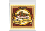 ERNIE BALL Earthwood 80/20 bronze soft /12 cordes 9-46 2051